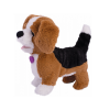 Catelusul Beagle Zigo 1