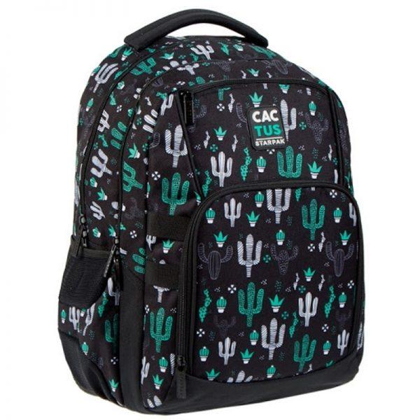 Ghiozdan Cactus