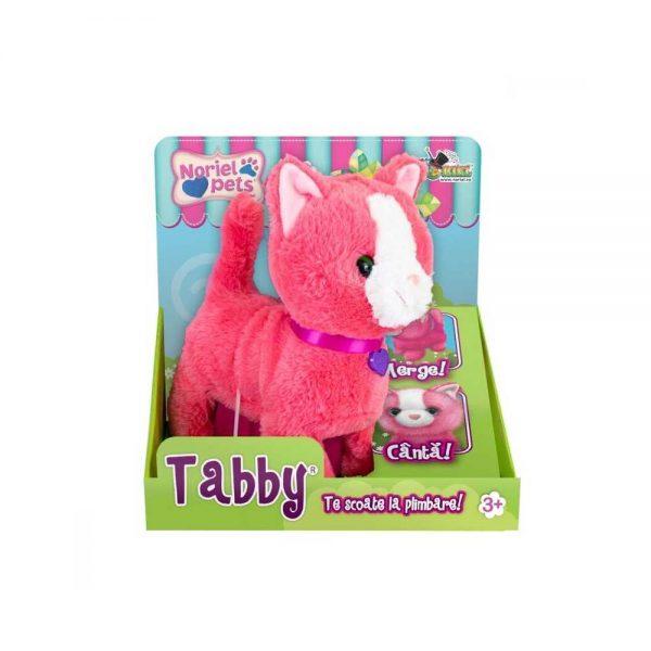 Noriel Pets - Tabby